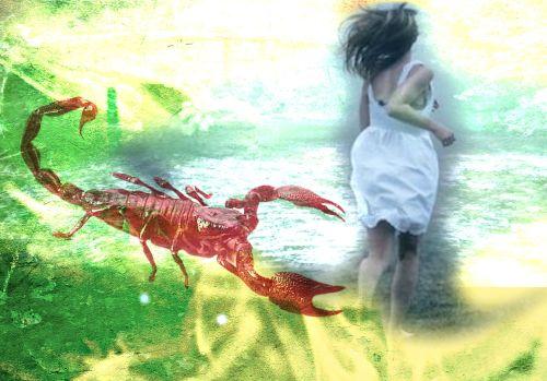 scorpion run